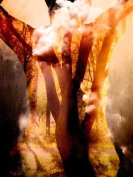 goddess-as-tree.jpg