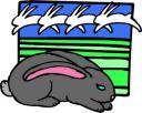 ostara-rabbit.jpg