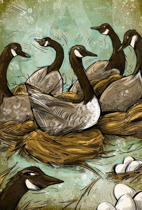 cartoon-geese