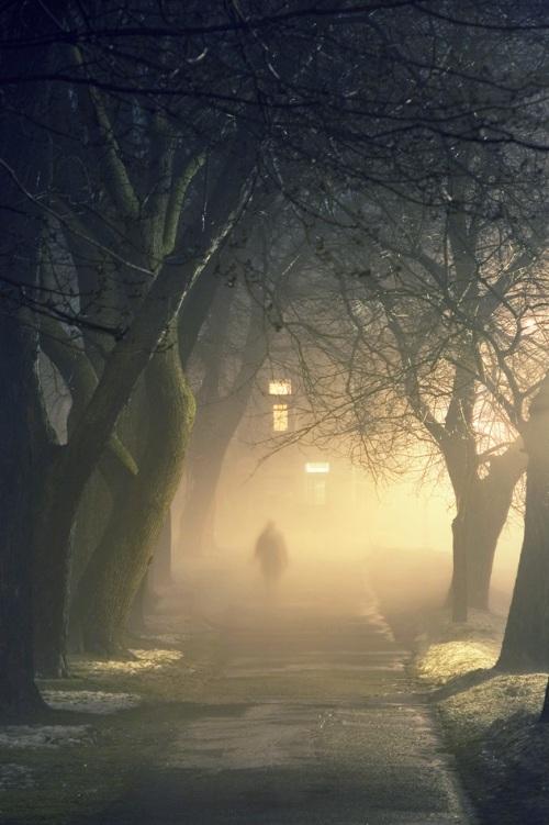 stranger in fog