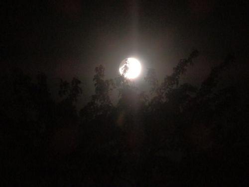 Moon - Dot