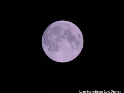 Moon - Rubin Latz